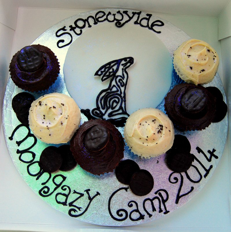 Moongazy Camp cakes