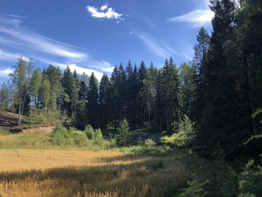 Finnish forest retreat